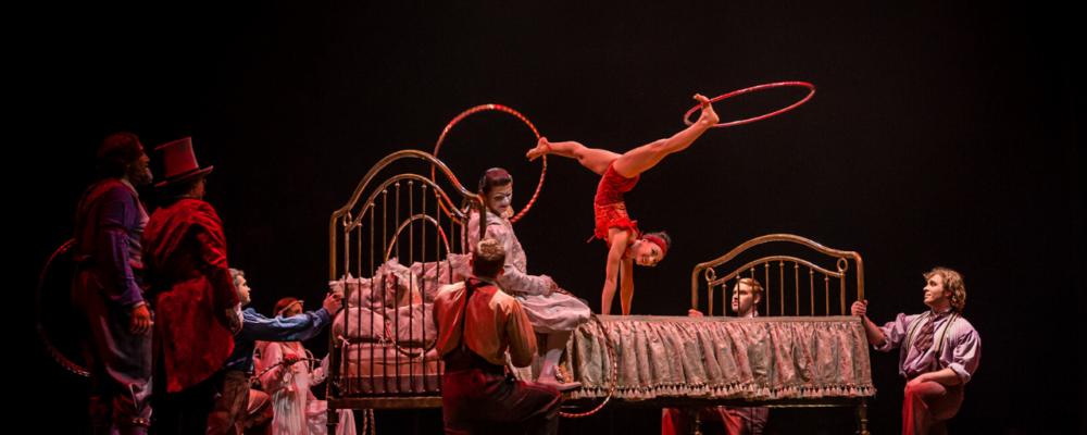 Cirque du Soleil Hoepels